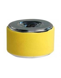 Filtre air 6.5CV